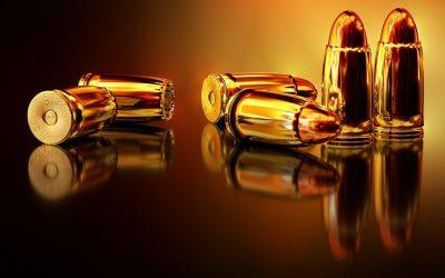 Revocación de la denegación de la renovación de una licencia de armas